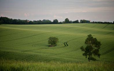Petite route -