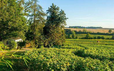 Campin paysage lac -
