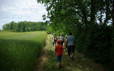 Le chemin d'En Jannet Carreau -